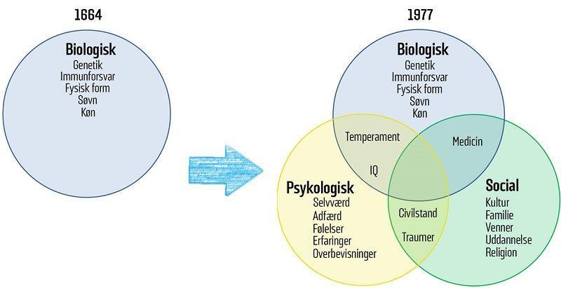 I 1977 kom den biopsykosociale model, som indeholder den tidligere biomedicinske model.