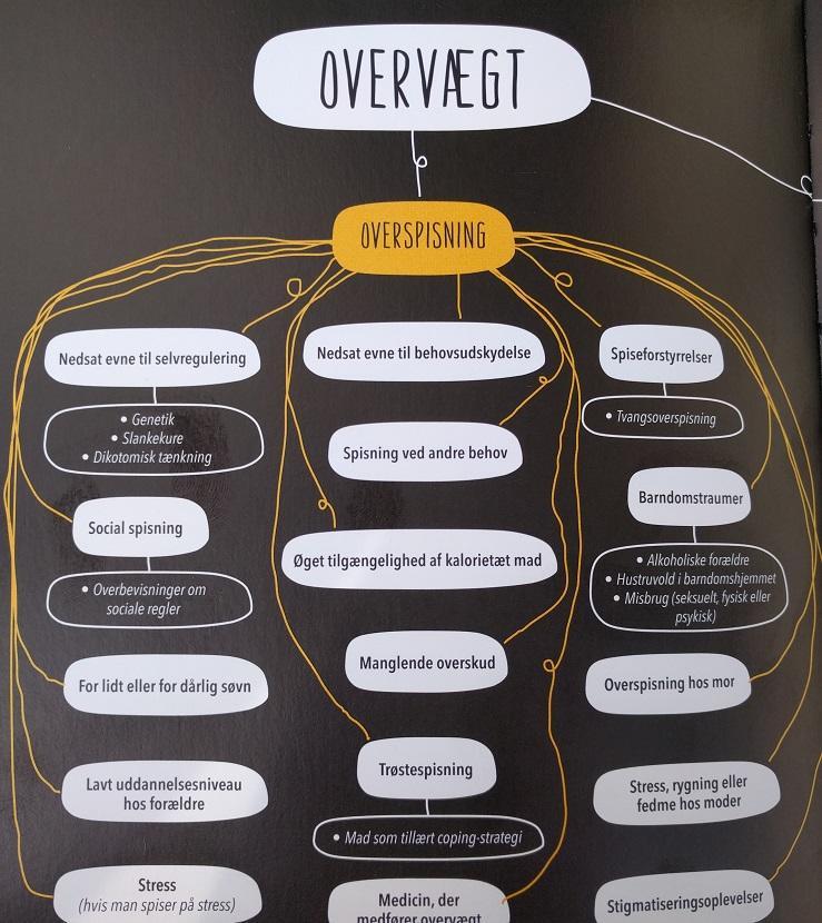 Der findes mange mekanismer bag overspisninger, hvoraf du kan se en række af dem her.