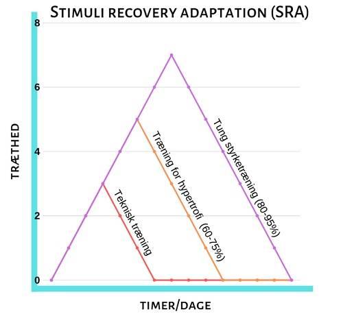 Stimuli recovery adaptation (SRA) viser træningens krav til restitution for at give resultater.jpg.
